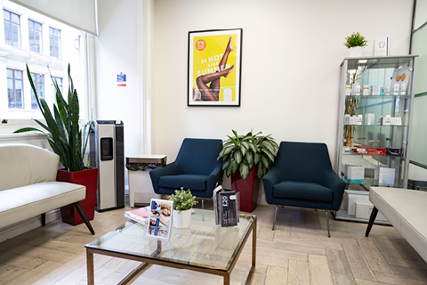 Waiting Room at Pulse Light Clinic London